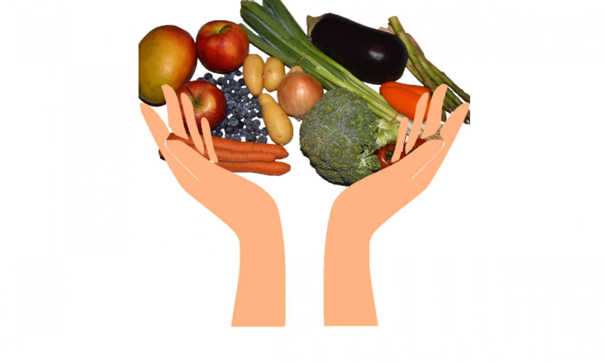 Ernährungsberatung Yvette Hirl
